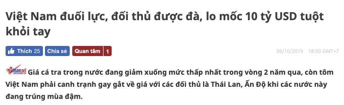 nhat bao viet vietnamnet